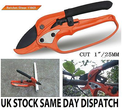 GARDEN HAND TOOL HEAVY-DUTY RATCHET SHEAR 25mm